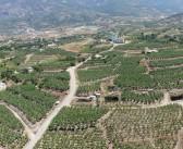 Havadan Panoramik Fotoğraf Çekimi